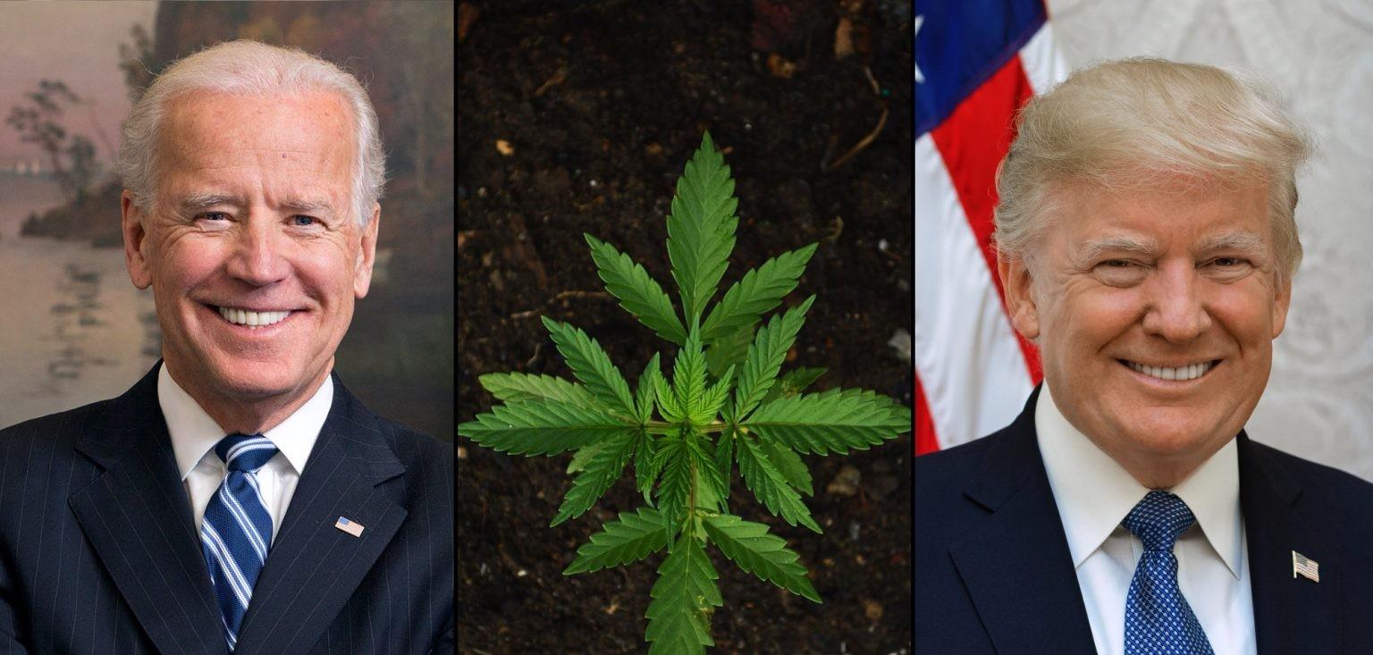 trump-biden-marijuana-1536x922