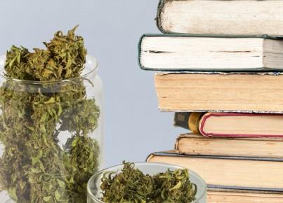 140425-roffman-weed-reads-tease_yobb5h
